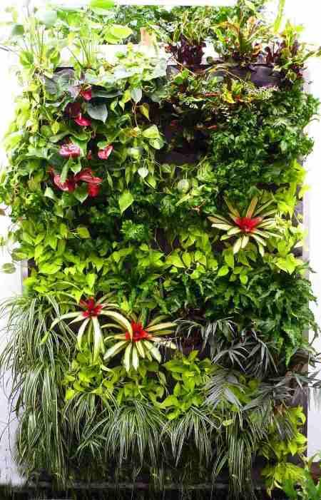 19 - les-jardins-suspendus-idee-originale fenetre