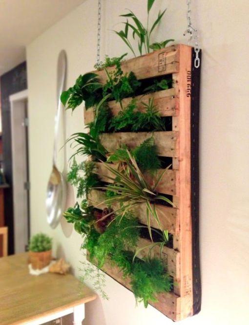5-mur-vegetal-palette-bois-interieur